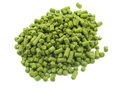 Vanguard 100G hop pellets